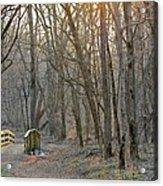 Foot Bridge In Fort Harrison State Park Acrylic Print