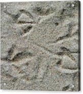 Foot Prints In The Sand Acrylic Print