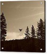 Foothills Flight Acrylic Print