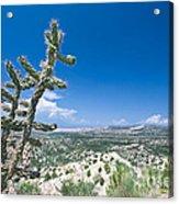 foothills of the Sangre De Christo Mountains Acrylic Print