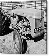 Ford Ferguson Classic Tractor During Vintage Tractor Rally At Glenarm Castle Open Day County Antrim Northern Ireland Acrylic Print