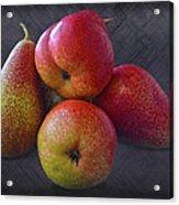 Forelle Pears Acrylic Print