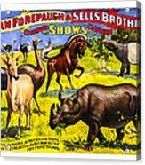 Forepaugh And Sells Wondrous Wild Beasts Acrylic Print