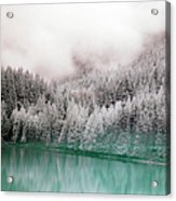 Forest And Pristine Lake Acrylic Print
