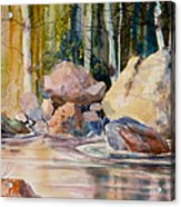 Forest And River Acrylic Print