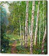 Russian Forest Footpath Acrylic Print