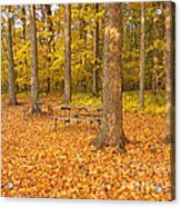 Forest Gold Acrylic Print