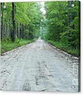 Forest Lane Acrylic Print