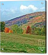 Forest Of Fire Acrylic Print
