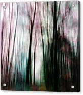Forest Of Imagination Acrylic Print