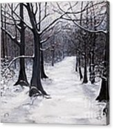 Forest Path In Winter Acrylic Print