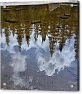 Forest Reflections Acrylic Print