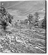Forest Slope And Sky In Black And White Acrylic Print