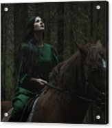 Forest Story Acrylic Print