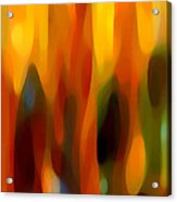 Forest Sunlight Horizontal Acrylic Print