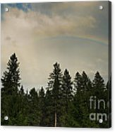 Forest Under The Rainbow Acrylic Print