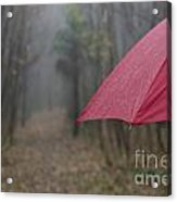 Forest With A Red Umbrella Acrylic Print