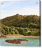 Forested Coast Line Acrylic Print
