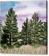 Forest's Edge Acrylic Print