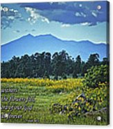 Forever Acrylic Print