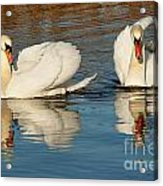 Forever Together  Acrylic Print