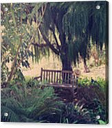 Forgotten.... Acrylic Print by Laurie Search