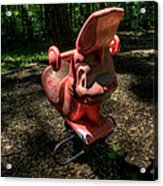Forgotten Playground Acrylic Print