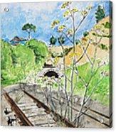 Forgotten Railway Acrylic Print