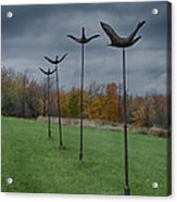 Formation Flying Acrylic Print