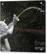 Forsyth Fountain Closeup Acrylic Print