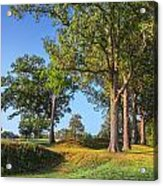 Fort Donelson Acrylic Print