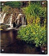 Fossil Creek Acrylic Print