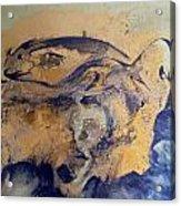 Fossil Fish Acrylic Print