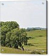 Fossil Prairie Panoramic 3 Acrylic Print