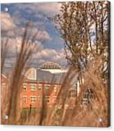 Founders Hall Through The Grasses Acrylic Print