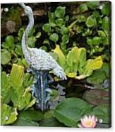 Fountain Among Lilies Acrylic Print