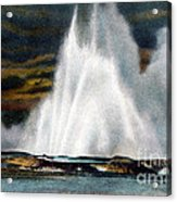 Fountain Geyser Yellowstone Np Acrylic Print