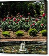 Fountain Of Roses Acrylic Print