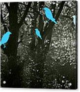 Four Birds Acrylic Print