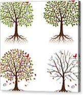 Four Seasons In One Tree Acrylic Print