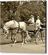 Four Wheel Cart Family Acrylic Print by Wayne Sheeler