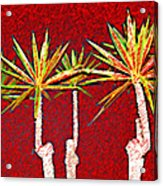 Four Yuccas In Red Acrylic Print