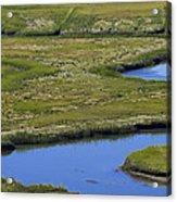 Fox Creek Marsh Acrylic Print