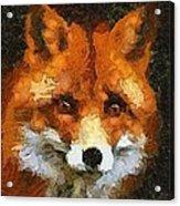 Fox Acrylic Print