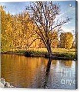 Fox River-jp2419 Acrylic Print