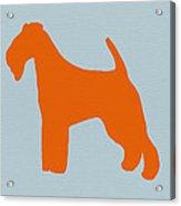 Fox Terrier Orange Acrylic Print by Naxart Studio