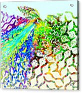 Fractal - Hummingbird Acrylic Print
