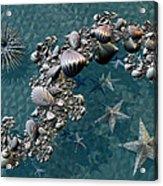 Fractal Sea Life Acrylic Print