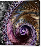 Fractal Spiral 2 - A Fractal Abstract Acrylic Print