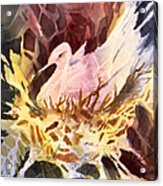 Fractured Fowl Acrylic Print